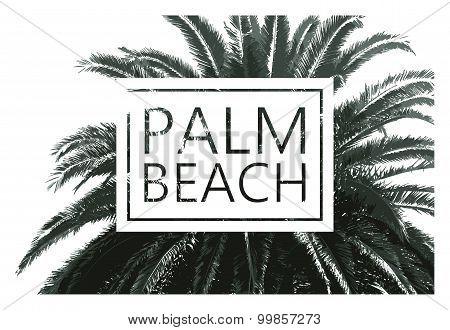 Vector palm tree print