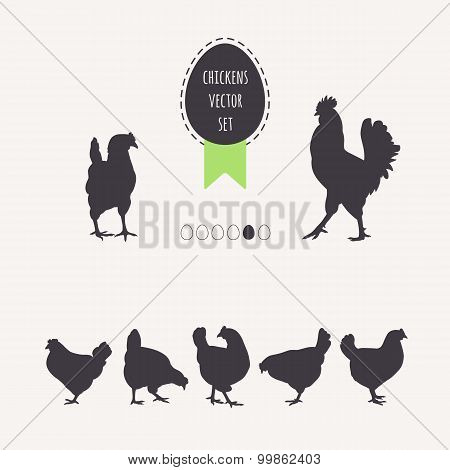 Set Chicken Hens.