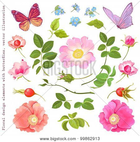 Collection of floral elements with flying butterflies, rose-hip, leaves and forget-me-not, vector illustration.