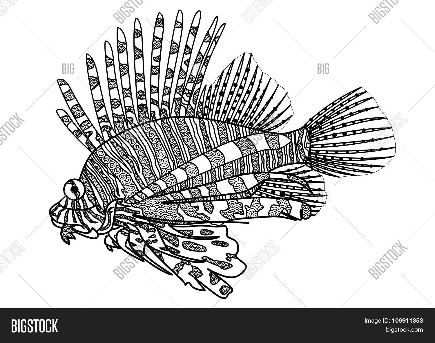 Lion Fish Coloring Vector & Photo (Free Trial) | Bigstock