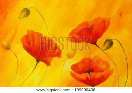 Red poppy on orange background. Red flower on abstract color background. Red poppies