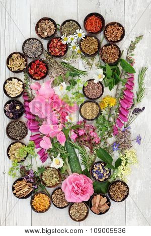 Alternative herbal medicine flower and herb selection over distressed wooden background.