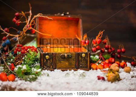 Christmas Winter Fairy With Miracle In Opened Chest. Winter Background Of Mystery Gift New Year, Fir