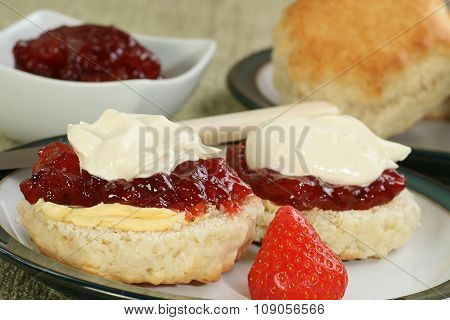 Devon Cream Scone