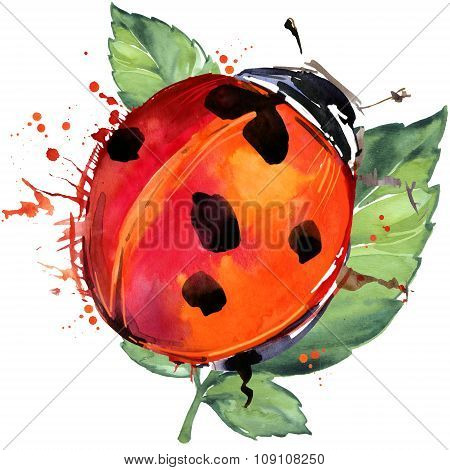 ladybird insect T-shirt graphics, ladybird illustration with splash watercolor textured background.
