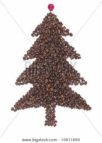Fir Made Of Coffee Beans