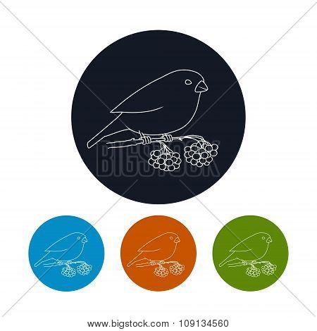 Icon Of A Bullfinch