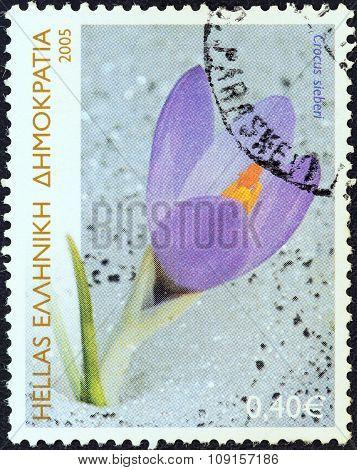 GREECE - CIRCA 2005: A stamp printed in Greece shows Cretan crocus (Crocus Sieberi)