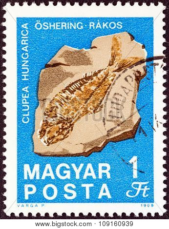 HUNGARY - CIRCA 1969: A stamp printed in Hungary from the