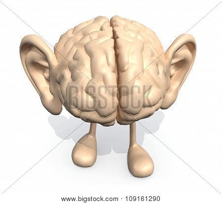 Human Brain With Big Ears And Legs