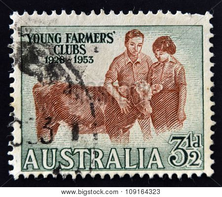AUSTRALIA - CIRCA 1953: A Stamp printed in Australia shows the Boy and Girl with Calf Young Farmers