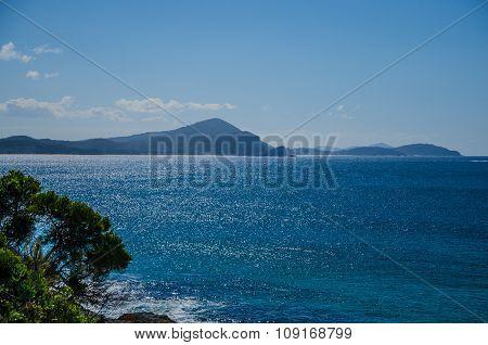Coast At Seal Rocks,  Nsw, Australia
