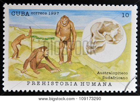 A stamp printed in Cuba dedicated to human prehistory shows the South African australopithecines