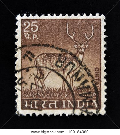 INDIA - CIRCA 1963: A stamp printed in India shows Deer with the inscription