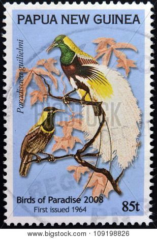 PAPUA NEW GUINEA - CIRCA 2008: A stamp printed in Papua shows bird of paradise paradisaea guilielmi