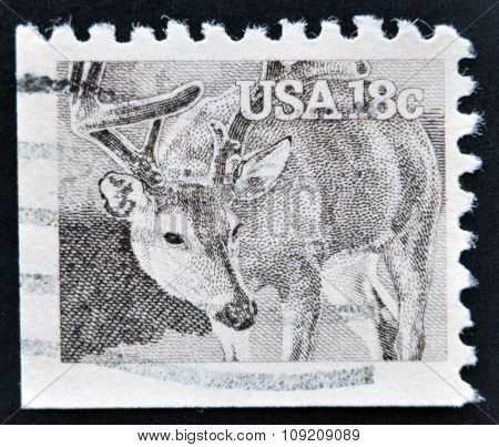 UNITED STATES OF AMERICA - CIRCA 1981: A stamp printed in the USA shows White-tailed Deer
