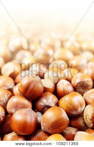 Closeup image of a heap of hazelnuts