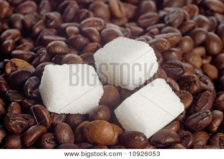 Cubes Of Sugar In Coffee Beans