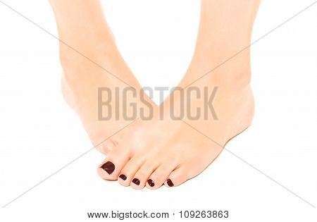Well-groomed female foot with brown pedicure