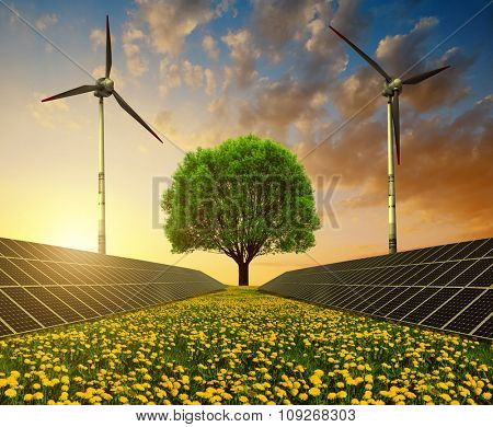 Solar energy panels, wind turbines and tree on dandelion field at sunset. Clean energy.