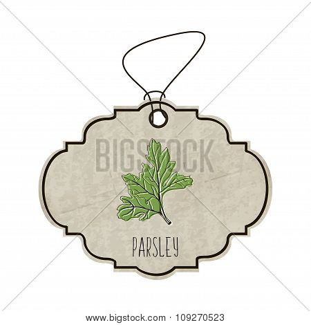 Handdrawn Illustration From The Collection Of Spices And Herbs. The Old Label In Retro Style With Co