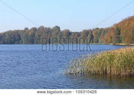 Autumnal Landscape At A Lake