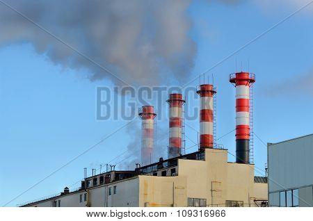 Plant Emissions
