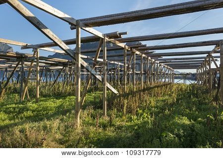 Empty Wooden Construction For Stockfish Cod