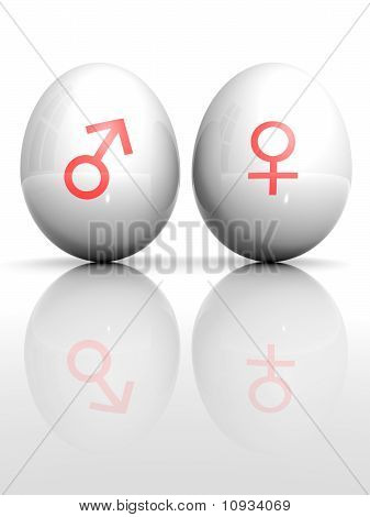 Isolated White Egg With Drawn Venus And Mars Symbol