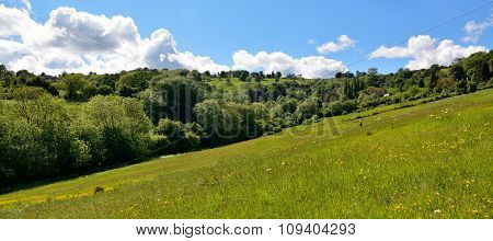 We took a charming walk to Charlcombe, sweetly situated in a little green valley