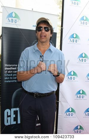 LOS ANGELES - NOV 10:  Ray Romano at the Third Annual Celebrity Golf Classic to Benefit Melanoma Research Foundation at the Lakeside Golf Club on November 10, 2014 in Burbank, CA