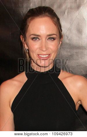 LOS ANGELES - AUG 13:  Emily Blunt at the HFPA Hosts Annual Grants Banquet - Arrivals at the Beverly Wilshire Hotel on August 13, 2015 in Beverly Hills, CA