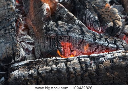 Black Embers In Fire