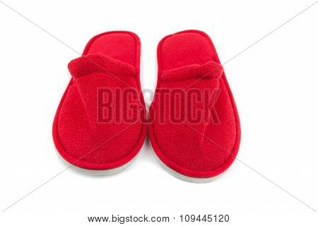 Pair Of Indoor Slippers Isolate Background