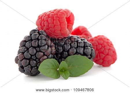 Raspberries And Blackberry With Mint Leaf