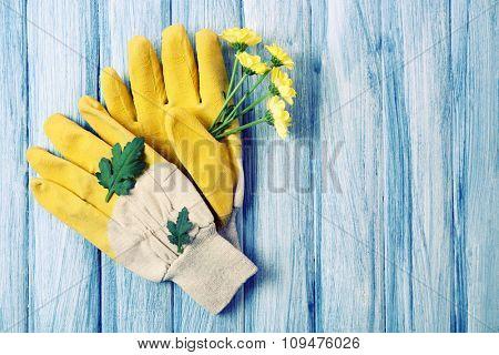 Yellow garden gloves and flower on blue wooden background