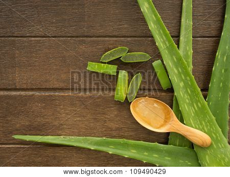 Aloe Vera Background
