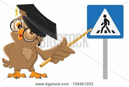 Owl teacher shows pedestrian crossing sign. Traffic Laws education