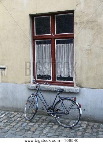 Bicycle & Window