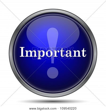 Important icon. Internet button on white background. poster
