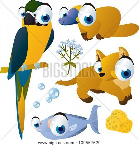 vector isolated flat animals collection set: australian animals: macaw, platypus, dingo, fish