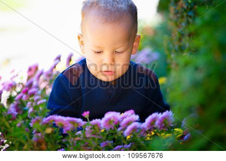 Boy And Flowers
