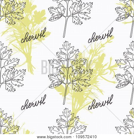 Hand drawn chervil branch and handwritten sign. Spicy herbs seamless pattern with hand lettering seasoning title. Doodle kitchen background. Vector illustration poster