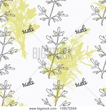 Hand drawn ruta or rue branch and handwritten sign. Spicy herbs seamless pattern. Doodle kitchen bac