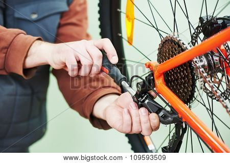 Bike service: mechanic serviceman repairman installing assembling or adjusting bicycle gear on wheel in workshop poster