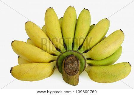 Bunch Of Ripened Bananas