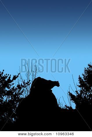 Black silhouette of cougar stalking prey in the early morning or night. poster