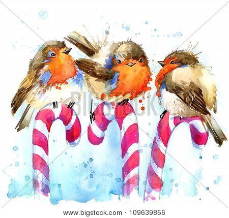 bird robin illustration. bird robin and Christmas candy watercolor background. bird robin  T-shirt g