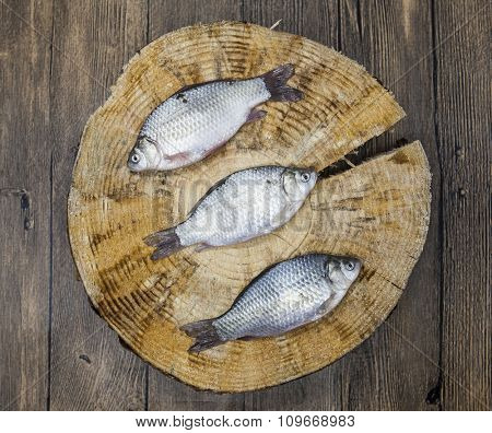 Fresh raw fish carp caught lying on a wooden stump. Live fish crucian Carassius auratus gibelio