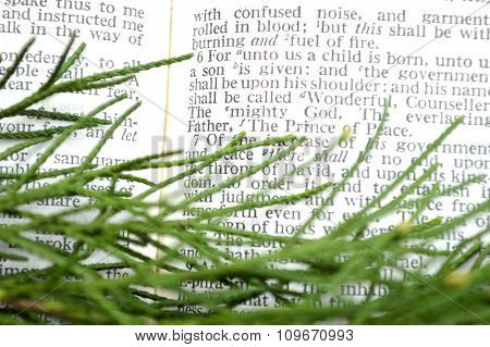 Greenery With Christmas Scripture, Isaiah 9:6